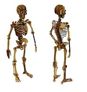 Quebra Cabeça Madeira 3D Esqueleto Humano Aquarela Brinquedos