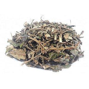 Chá de canela de velho - a granel