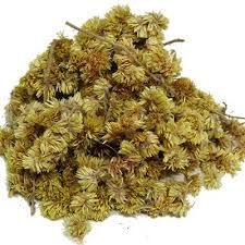 Macela em flor para Chá - a granel