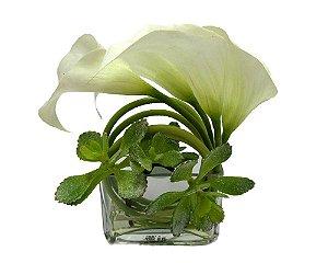 Copo de Leite Branco com Vaso de Vidro 24x15cm