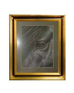 Quadro Horses Black Eye Moldura de Madeira Dourado 50x60cm