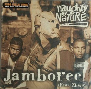Disco  Single de Vinil - Naughty By Nature