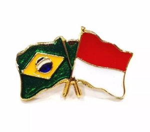 Bótom Pim Broche Bandeira Brasil X Indonésia Folheado A Ouro