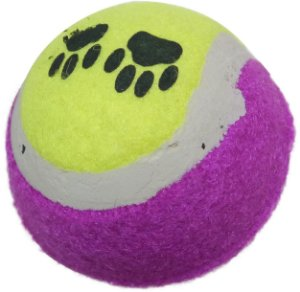 Brinquedo Bolinha de Tennis Amarelo/Roxo PT-67