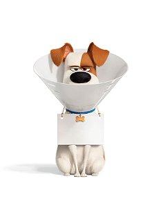 Quadro Decorativo Poster Cachorro