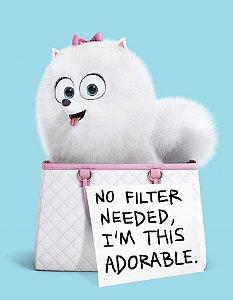 Quadro Decorativo Poster Cachorro Adorable