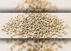 Quinoa em Grão