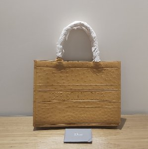 Christian Dior - Dior book ostrich leather (Sale,Somente esta semana)