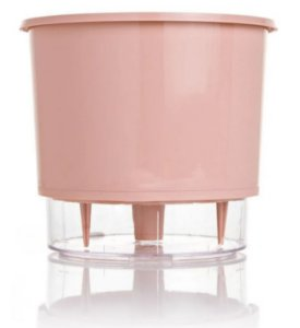 Vaso Autoirrigável Médio 16cm x 14cm Rosa Quartz Wishes N03