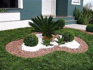 Pedra Decorativa  Branca 900g - Nº 0 - Jardins Vasos