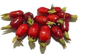 Muda Cereja do Cerrado Vermelha ( Eugenia calycina )