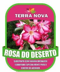 Substrato Rosa do deserto 2 kg -Dancruz Plantas
