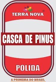 Casca de Pinus - Polida Tamanho P  - 2 KG