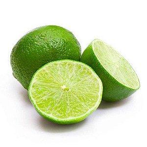 KIT 400 Muda de Limão Taiti - Enxertada