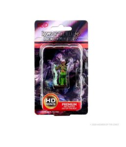 Dungeons & Dragons: Icons of the Realms – Premium Figures – Humam Female druid
