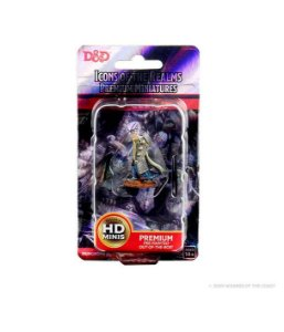 Dungeons & Dragons: Icons of the Realms – Premium Figures – Elf Male Cleric