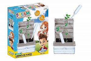 STEAM - LABIRINTO DE PLANTAS
