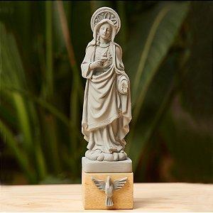 Sagrado Coração de Maria - Cinza