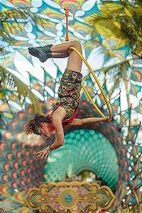 Lira acrobática - aerial hoop