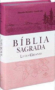 BÍBLIA RA LETRA GIGANTE - TRIOTONE