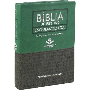 BÍBLIA DE ESTUDO ESQUEMATIZADA- VERDE/CINZA