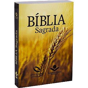 BÍBLIA NAA  BROCHURA LETRA MAIOR TRIGO