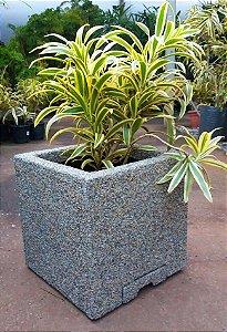 Vasos para plantas, Quadrado com rodizio