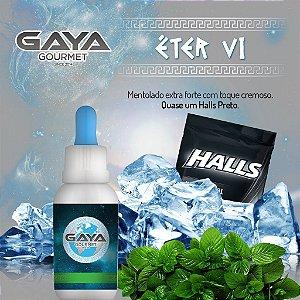 Gaya Gourmet - ETER VI