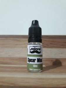 Spear mint –  TFA
