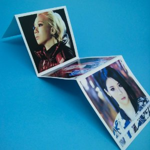 Polaroid Sanfoninha - 2NE1 CRUSH