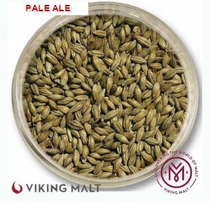 MALTE PALE ALE - VIKING