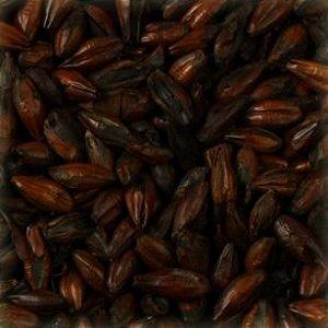 MALTE CHATEAU BLACK BELGA (ESCURO) - EBC (1500)