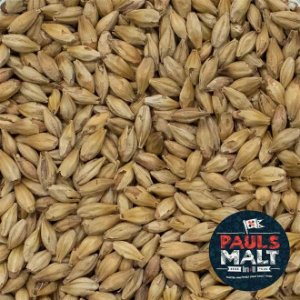 MALTE PAULS MALT MISERABILE FISH MELANOIDIN