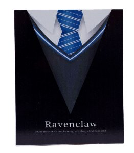 Placa Harry Potter Ravenclaw
