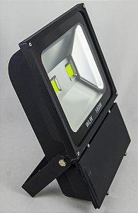 Refletor De LED 100W luz Verde IP66