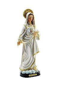 Resina Maria Imaculada