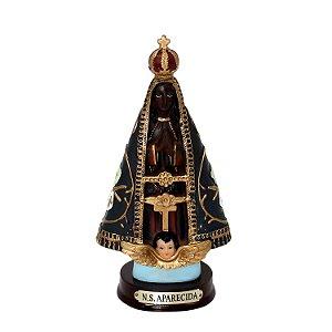 Resina Nossa Senhora Aparecida 16cm