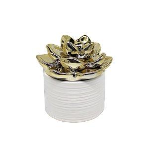 Vaso Cerâmica Suculenta