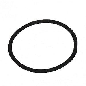 Anel de Vedação O Ring