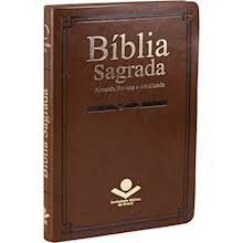 Bíblia Sagrada Nova Almeida Atualizada Marrom Couro sintético| SBB