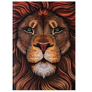 Bíblia Sagrada – Letra Normal NAA – Leão Aslam