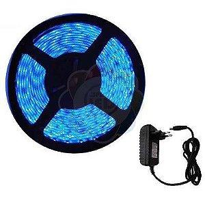 Fita de LED 3528 com 5 Metros Azul