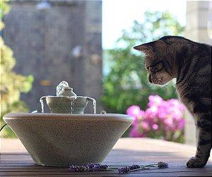 Fonte de Água Tulipa em Cerâmica