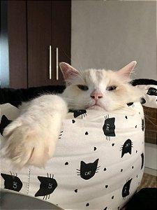 Muffin Cama para Gatos