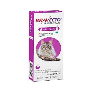 Antipulgas e Carrapatos MSD Bravecto Transdermal para Gatos de 6,25 a 12,5 Kg - 500 mg Antipulgas e Carrapatos MSD Bravecto Transdermal para Gatos de 6,25 a 12,5 Kg