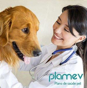 Plano de Saúde Plamev