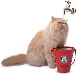 Bebedouro Fonte para Gatos Torneira MagiCat 220v - Vermelho