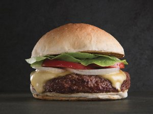 Kit Cheese Burger Fraldinha (Wessel) - com 4 unidades