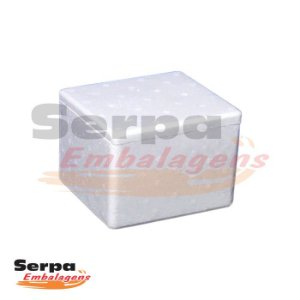 Caixa de Isopor para Alimentos / Medicamentos 500gr