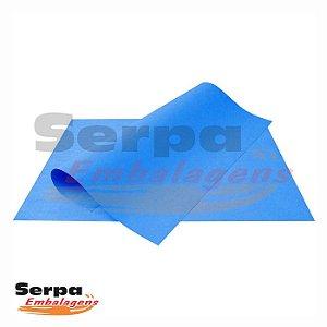 Cartolina Dupla Face Azul Escuro 48x66cm